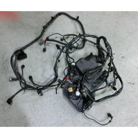 Faisceau / Câblage de moteur pour Audi A4 B6 2L5 V6 TDI ref 8E1971072HK