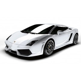 PIECES LAMBORGHINI LP560