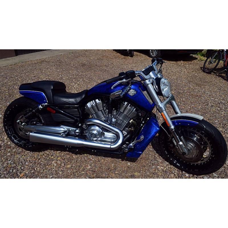 Vrod For Sale >> Harley Davidson V-Rod Muscle custom 2011 23.000 kms 1250 ...